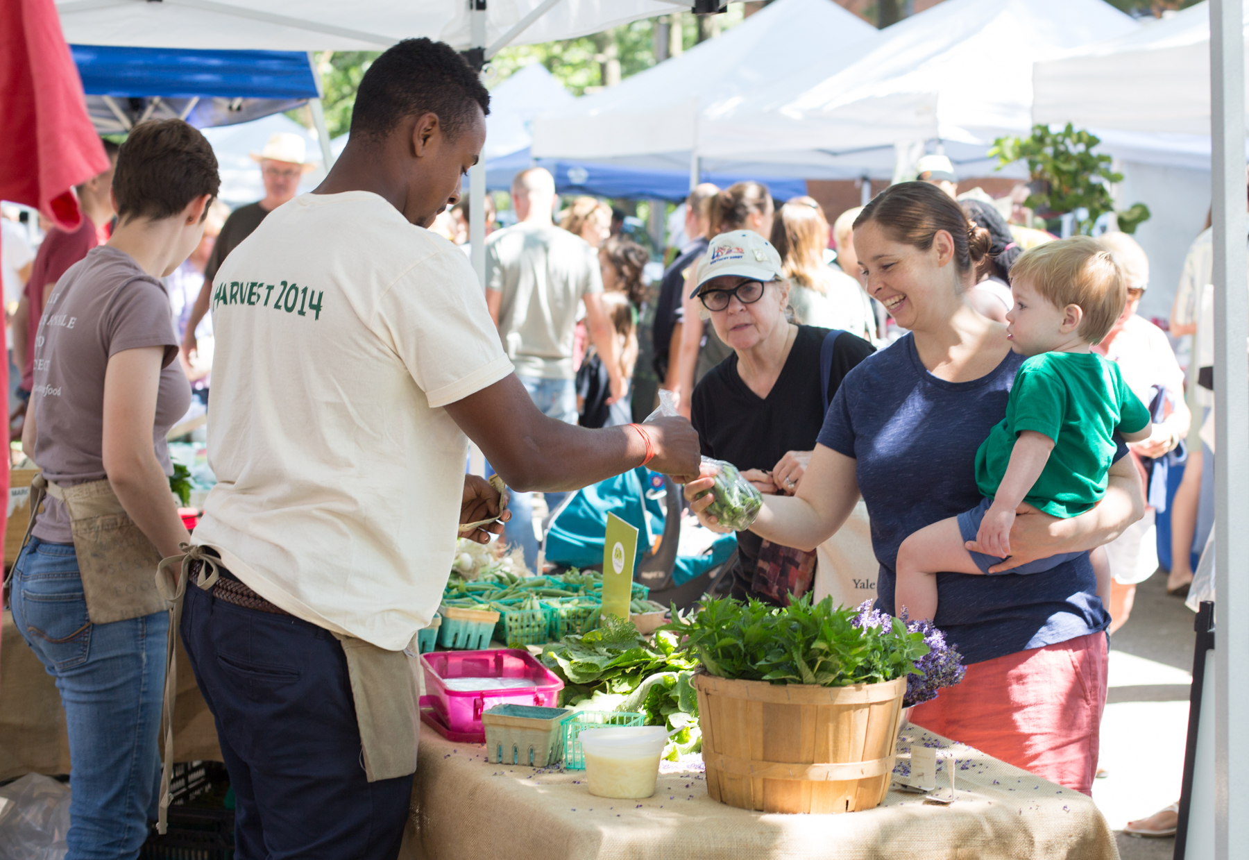 New Haven Farmers' Market