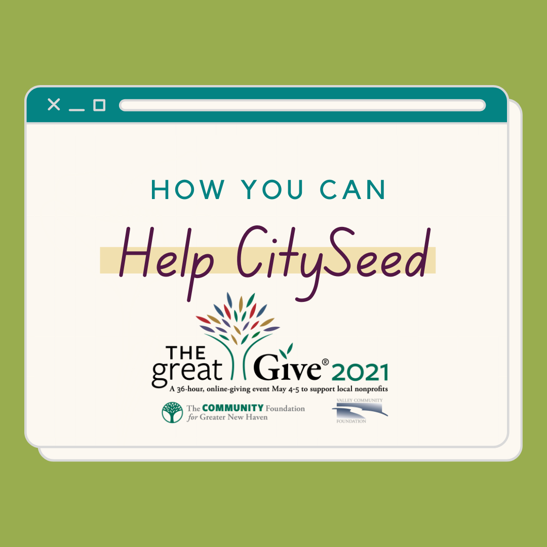 Help CitySeed in a GREAT way! Become a Great Give Peer Fundraiser!